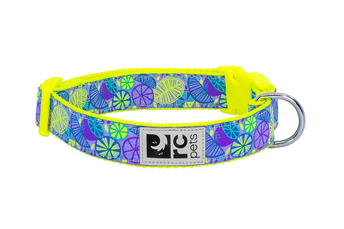 RC pets collier agrume