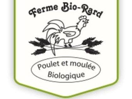 Croissance poulet Bio