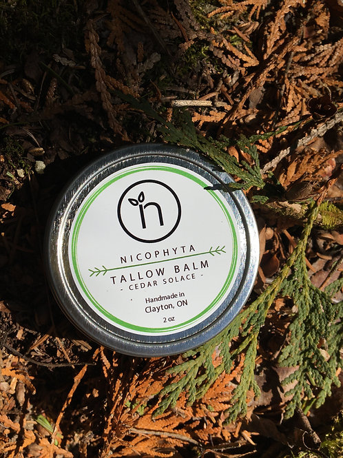 Tallow Balm - Cedar Solace