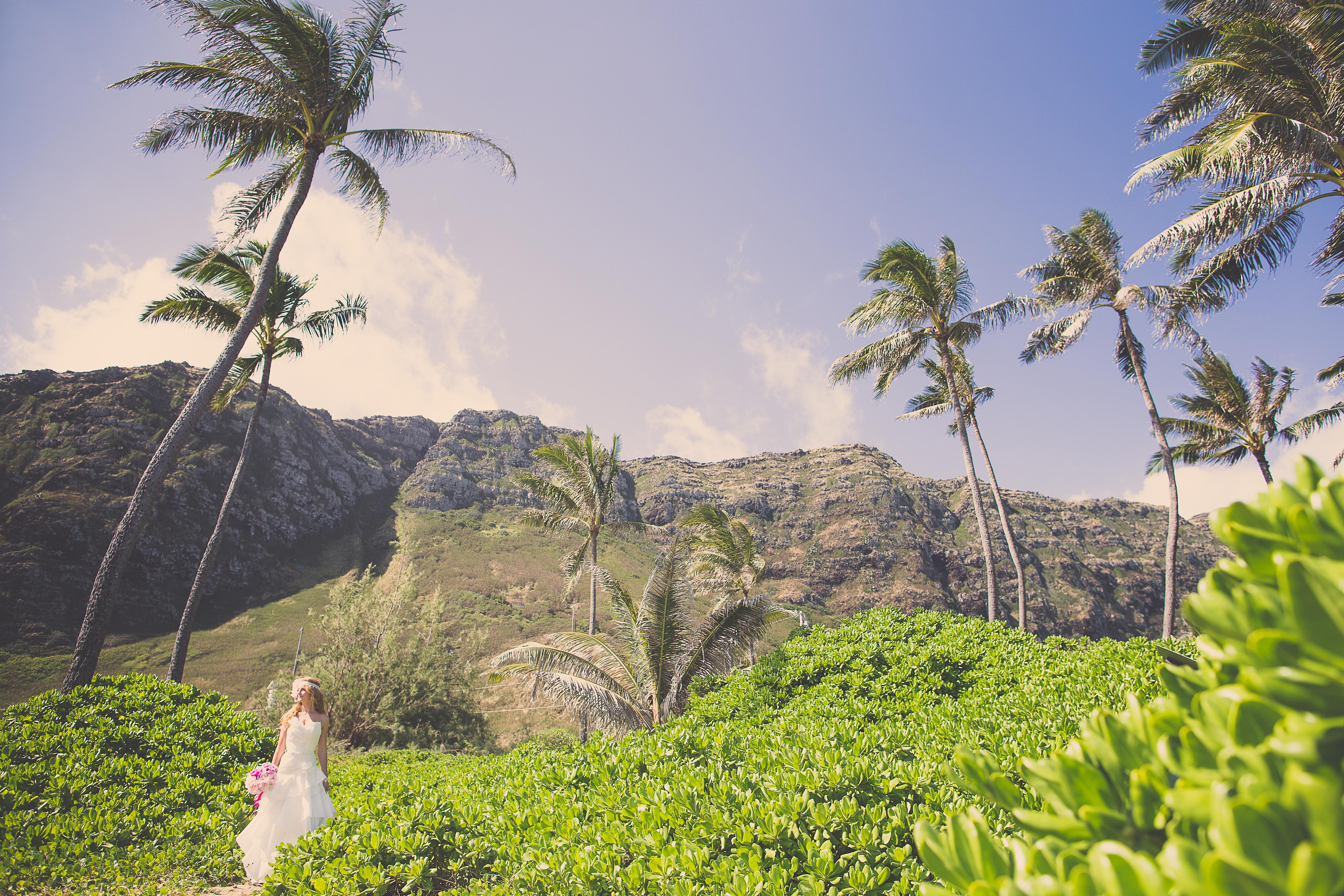 ハワイウエディング