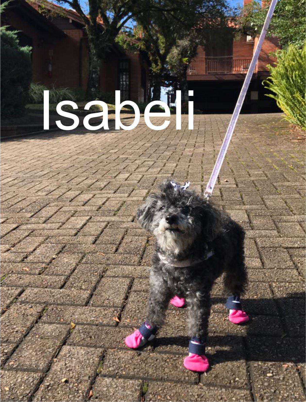 IMG-20170505-WA0005 - Isabeli