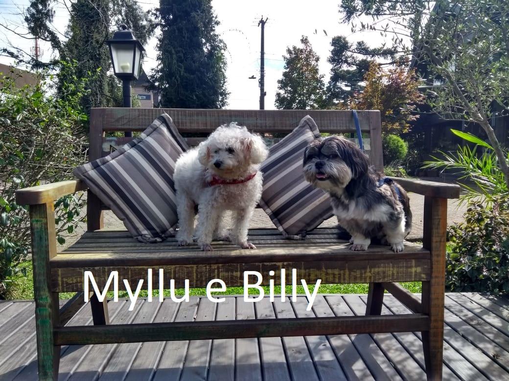 Myllu e Billy.3