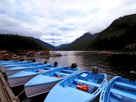 A Quick Update on Communication With Ross Lake Resort