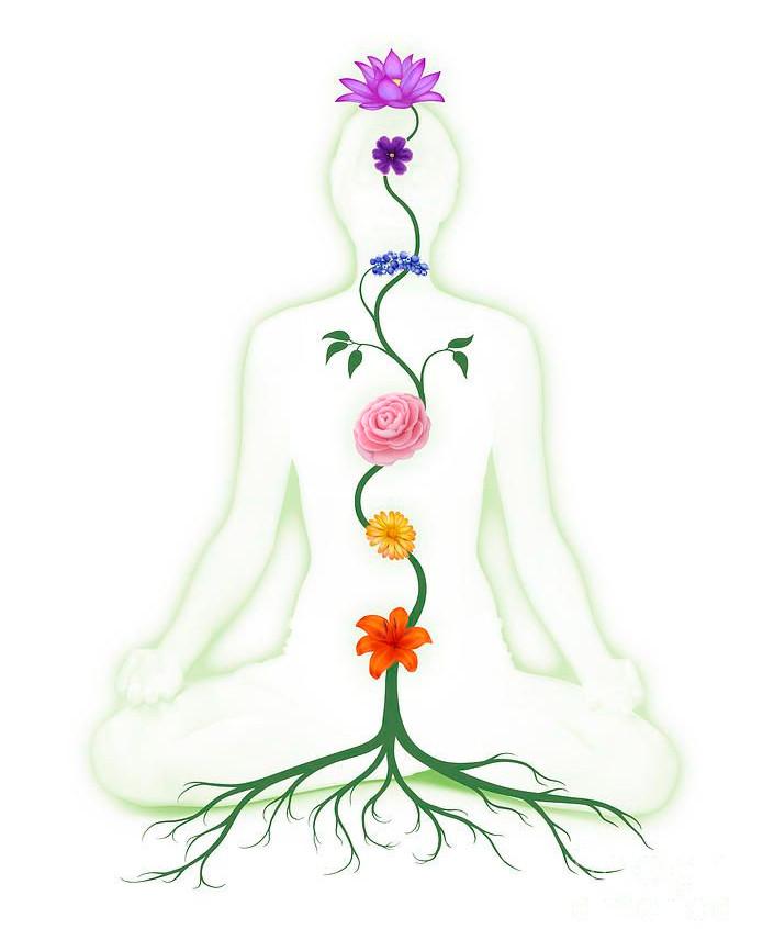 29ed8212a39cbef30387b8aeb971150c--chakra-yoga-chakra-healing