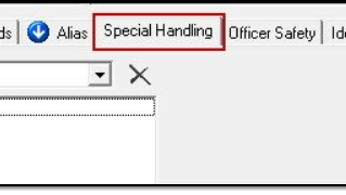 February 2021 Tips - Entering Special Handling Information