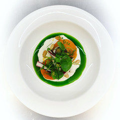 Burrata with persimmon, bitter leaves and fennel oil