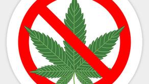 Marijuana in Ontario Rentals