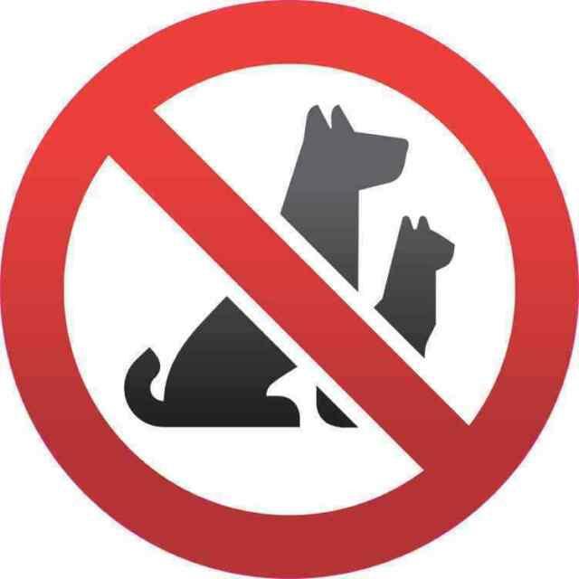 No Pet condominiums