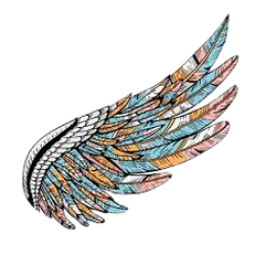 colorful wing.png