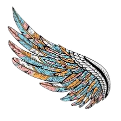 colorful wing_edited.png