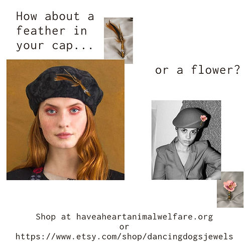 Feather in your cap facebook.jpg