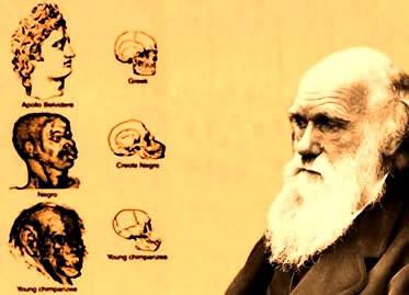 Socia Darvinismo: konsekvencoj de grandskala miskompreno