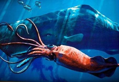 la kolosa batalo de la marprofundo: kaĉalotoj x giganta loligo