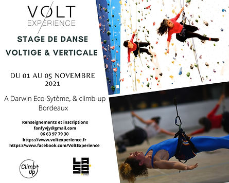 Stage de danse voltige & verticale.jpg