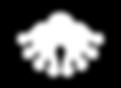 SWA_Logo_2019_Icon_White_200.png