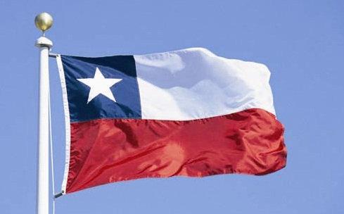 Bandera chilena 50x80 cms.