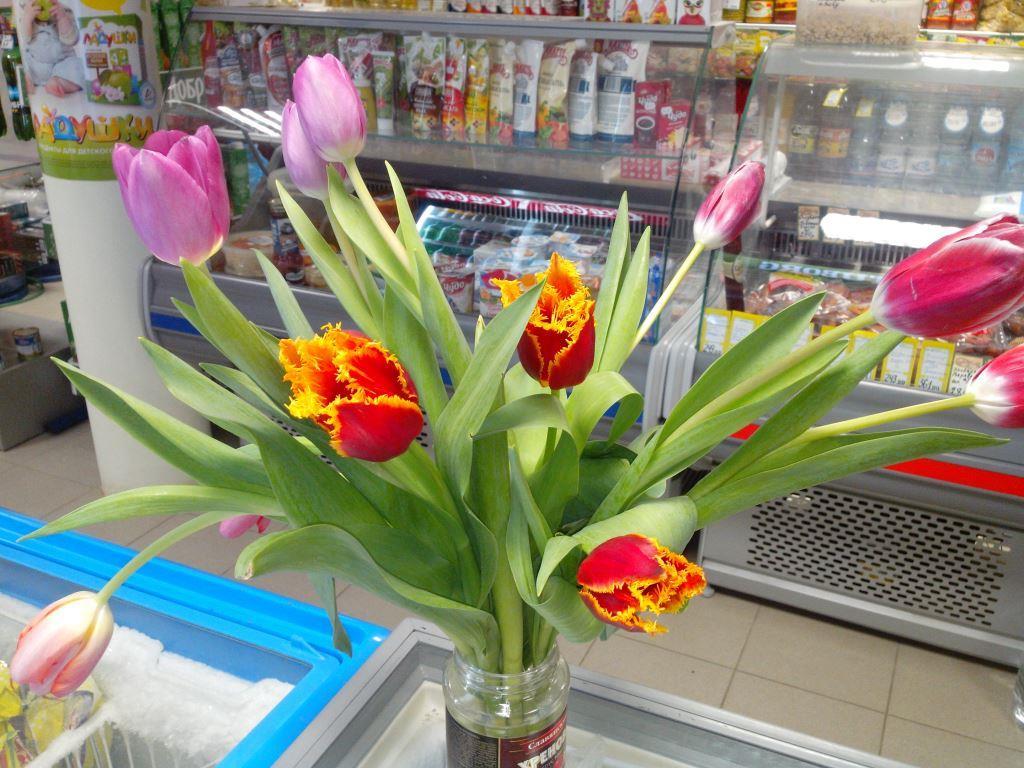 1_5 Маркет тюлпаны