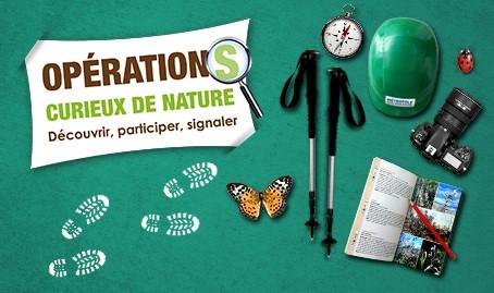 """""""Curieux de Nature"""" à Nice et dans la métropole"""