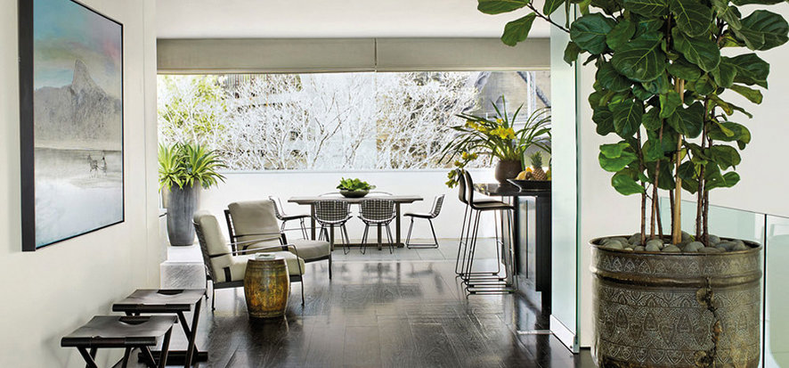 Plants can make a statement in your space.