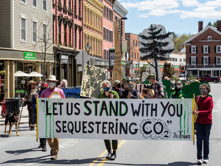 standing trees march with sign.jpg