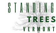 STANDING trees vermont.png