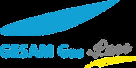 2019_logo gesam.png