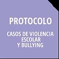 Iconos Protocolos Violencia Escolar y Bu