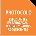 Iconos Protocolos Estudiantes Embarazada