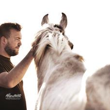 Afscheid van je paard 14
