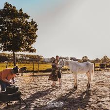 Afscheid van je paard 24
