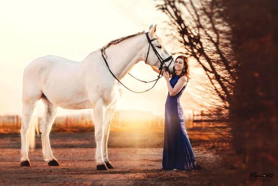 wit paard, zonsondergang