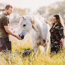 Afscheid van je paard 11