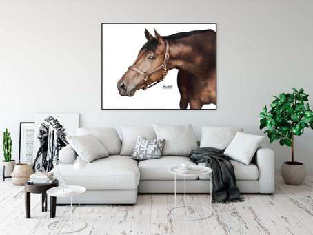 Fine Art Paarden Fotoshoots in Maldegem (Middelburg, Oost-Vlaanderen)