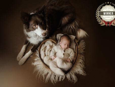 AlisonBQphotography: internationale winnende fotografe voor newbornfotografie en paardenfotografie