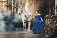 Paardenfotografie, paardenfotograaf, paarden, fotograaf