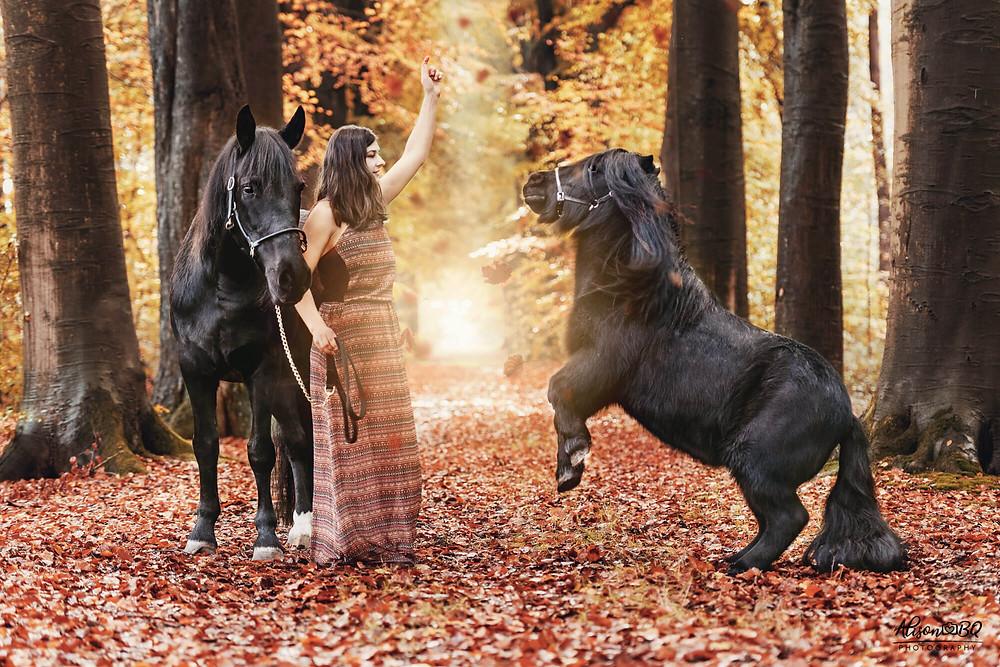 paard trainen, paardenfotoshoot