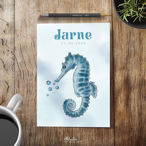 Geboortekaartje - Zeepaardje