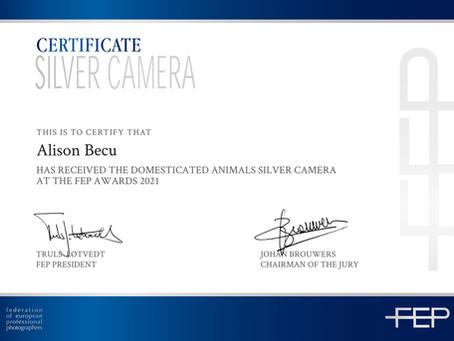 AlisonBQphotography wint Zilver met paardenfoto's op de prestigieuze wedstrijd FEP 2021.