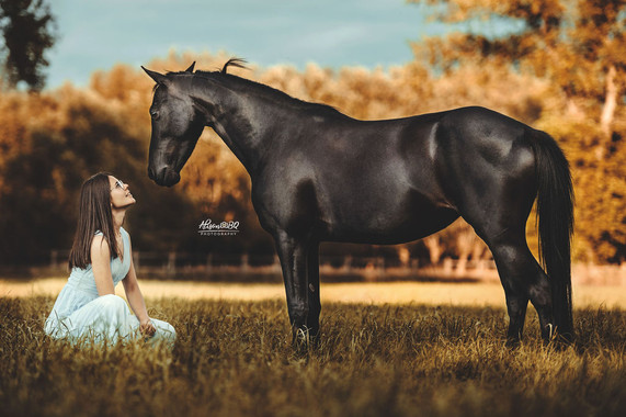zwart paard, meisje, blauwe jurk