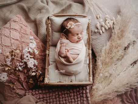 Baby portret studio in Maldegem (Middelburg, Oost-Vlaanderen)