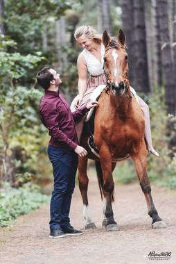 koppel, paard