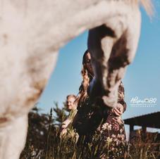 Afscheid van je paard 5