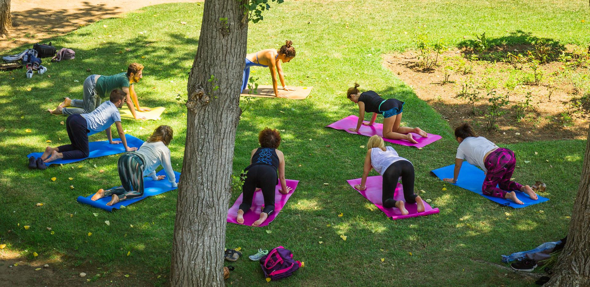 Good Vibe Yoga at the Park