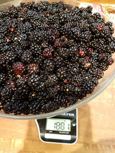 la robeline blackberries.jpg