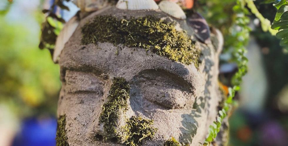 Jersey Pot Head - Land & Sea