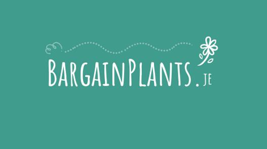 Website & Social Media - BargainPlants.je
