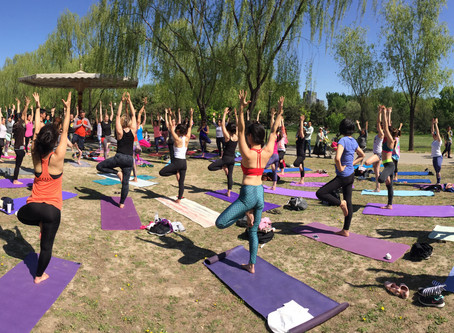 Yoga in the Park 2017