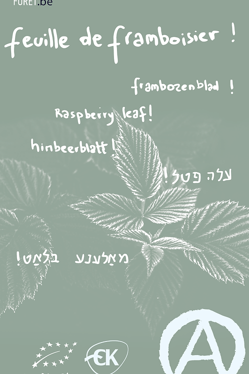feuilles de framboisier 40g