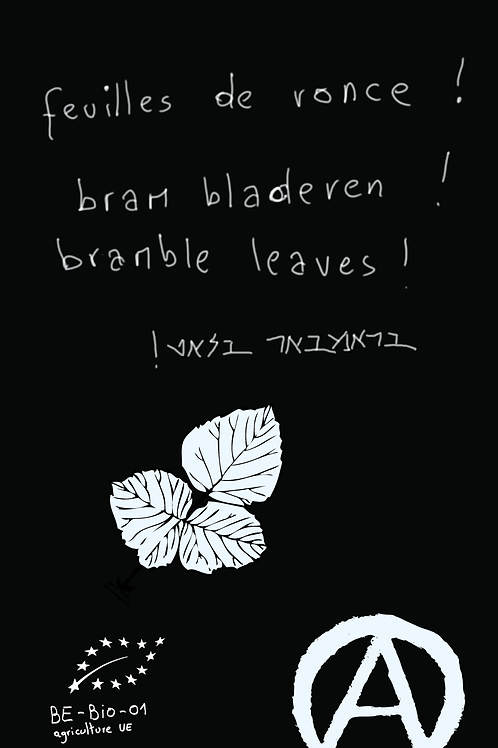 feuilles de ronce 40g