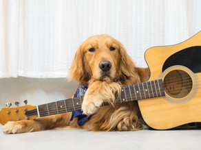 How Learning Guitar Can Improve Your Mental Health